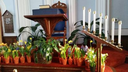 easter plants in church